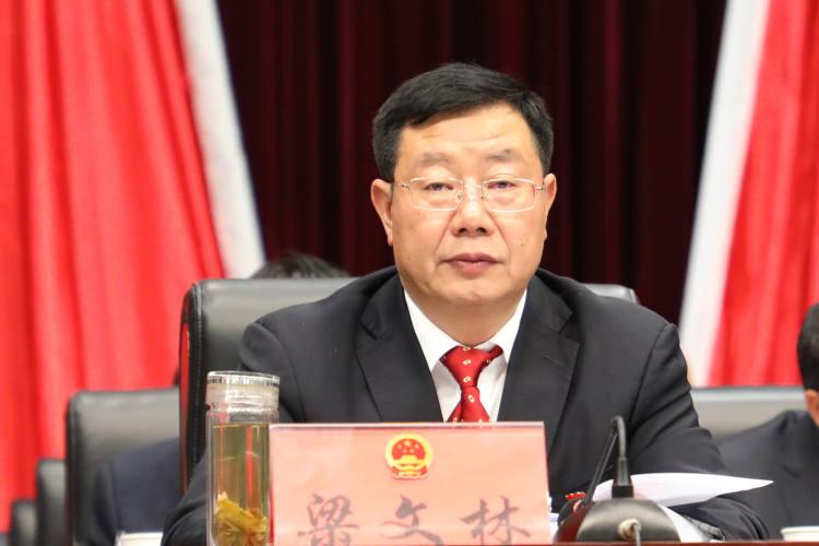 中共双柏县委副书记、县人民政府县长梁文林出席闭幕式